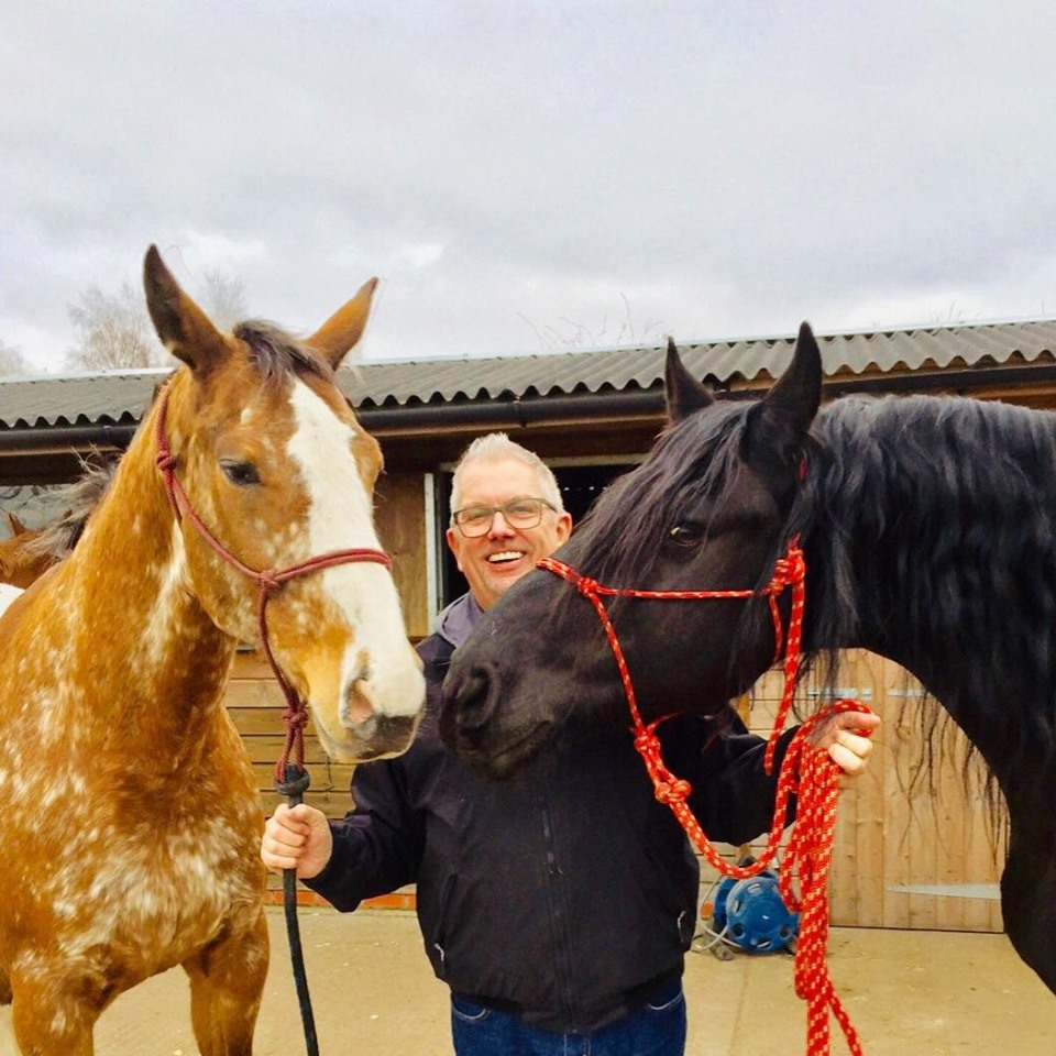 Mike delaney with horses during equine therapy