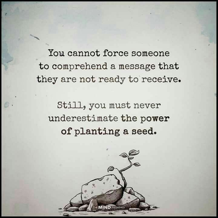 the power of planting a seed quote
